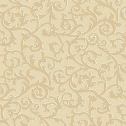 wallpapers (4)